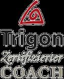 aTrigon_Zert_Background